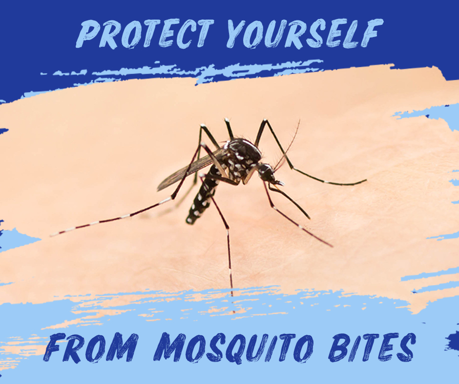 Mosquito Bite Protection | Why It's So Important for People Over 50 | Picture of mosquito